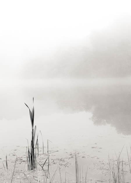 Indigo Lake in the Mist, 2012