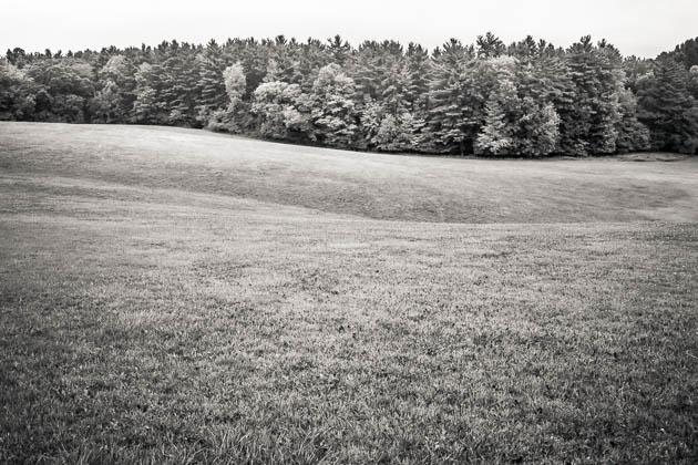 Hillside, 2012