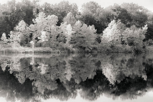 Early Autumn, 2012
