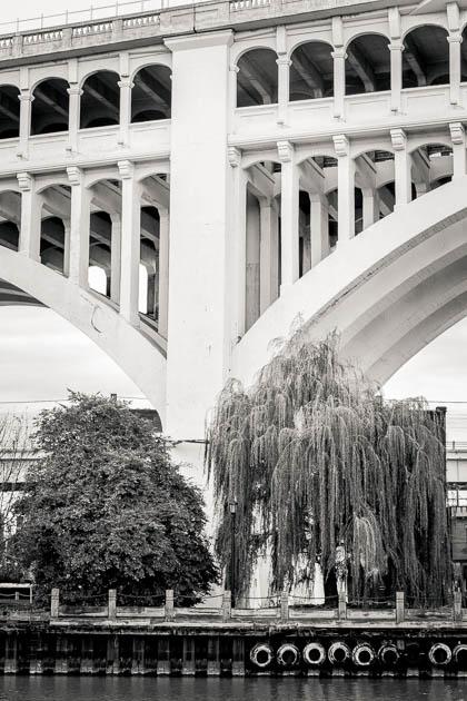 Bridge, Trees and Tires, 2013