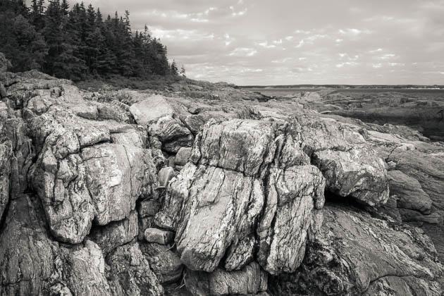 Rocky Coast, Reid State Park, 2014