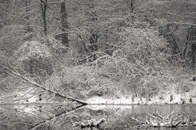 Winter Pond, 2016
