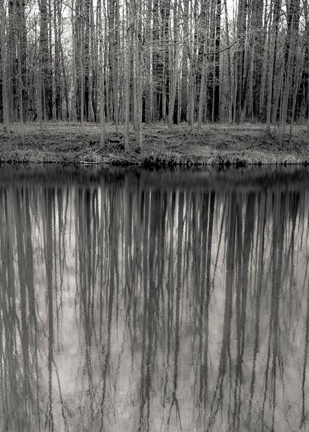 Reflection, Beyer's Pond, 2016